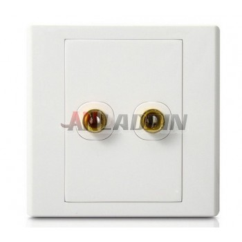 Dual Column Audio Lines Plug Wall Plate White