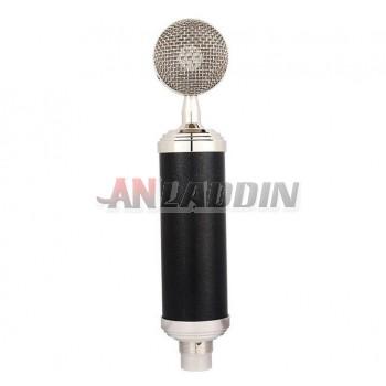 Large diaphragm condenser mic