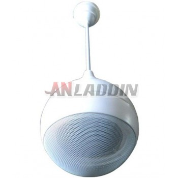 Background music speaker / Suspension Speaker 6W