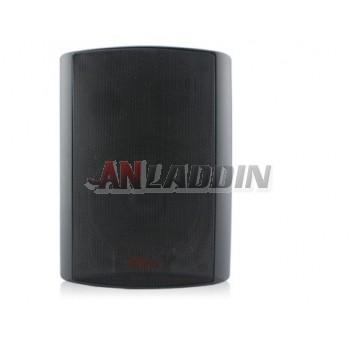 Wall Speaker / B11