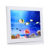 12-inch HD Digital Photo Frame