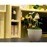 Colorful light-controlled mushroom night light with flowerpot