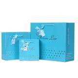 Korean style blue paper gift bag