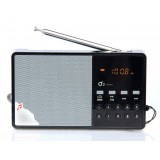 Card speaker / portable radios